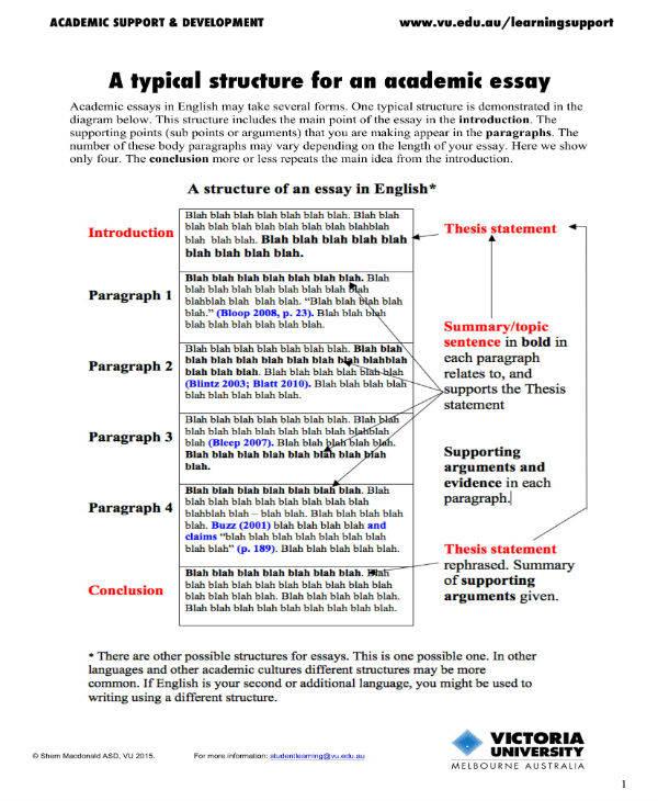 19+ Essay Templates in PDF Free  Premium Templates