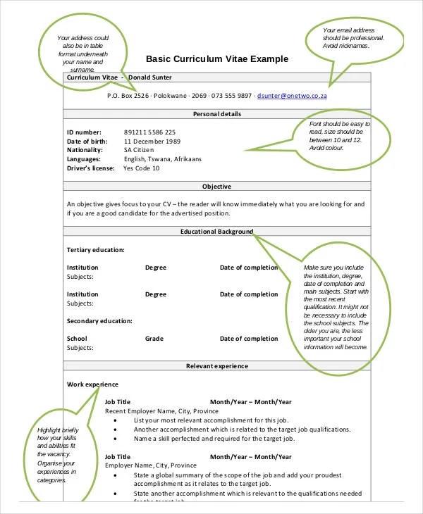 20+ CV Examples in PDF Free  Premium Templates