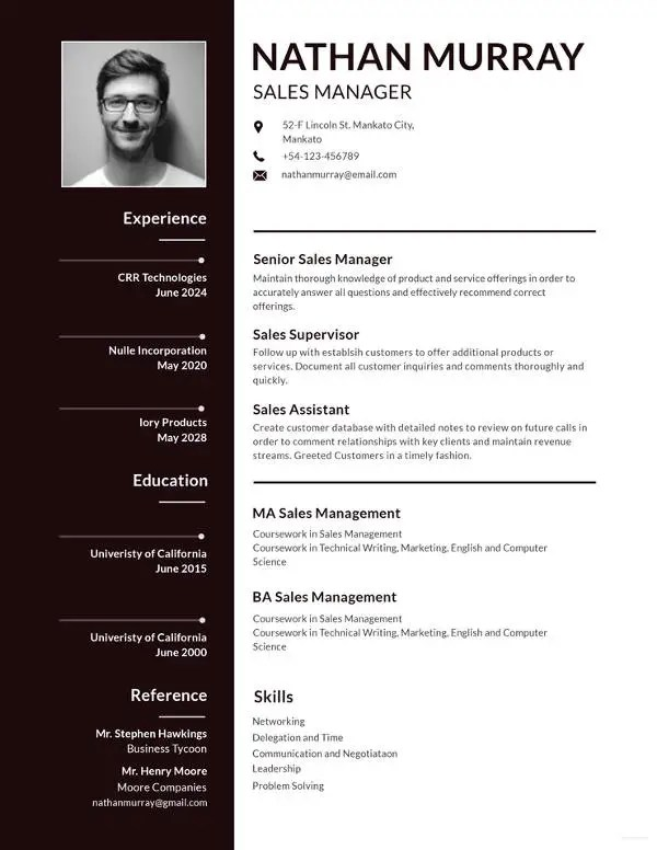 12+ CV Templates for Job Application - PDF, PSD, DOC, AI, Publisher