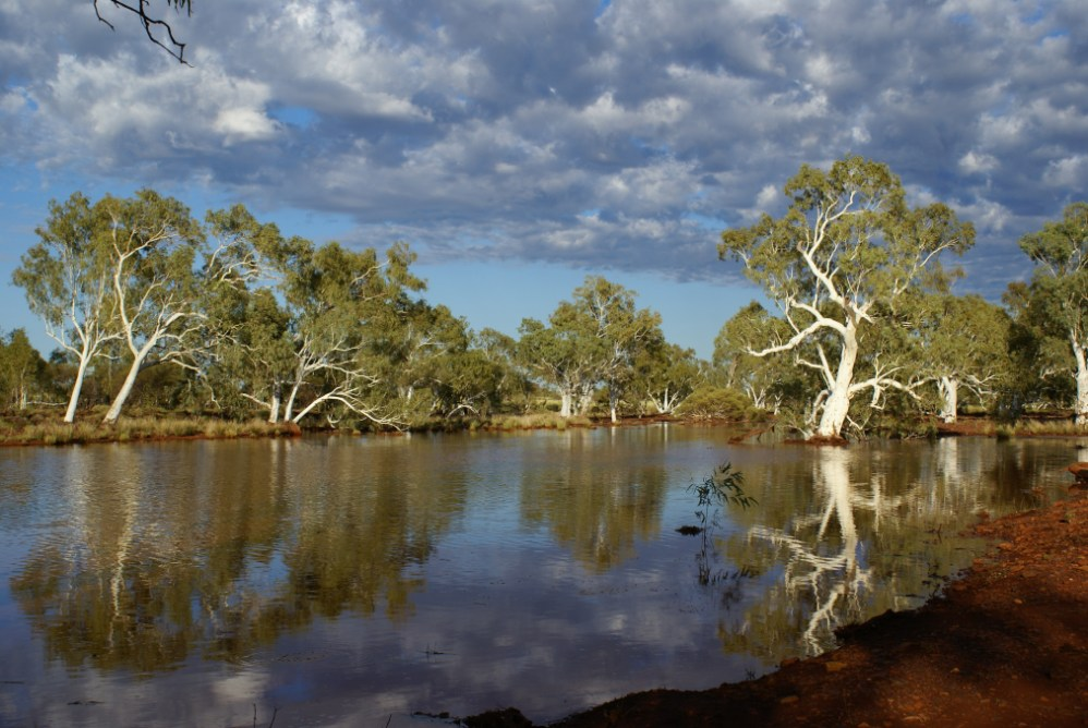 Australia39s South West A Hotspot For Wildlife And Plants