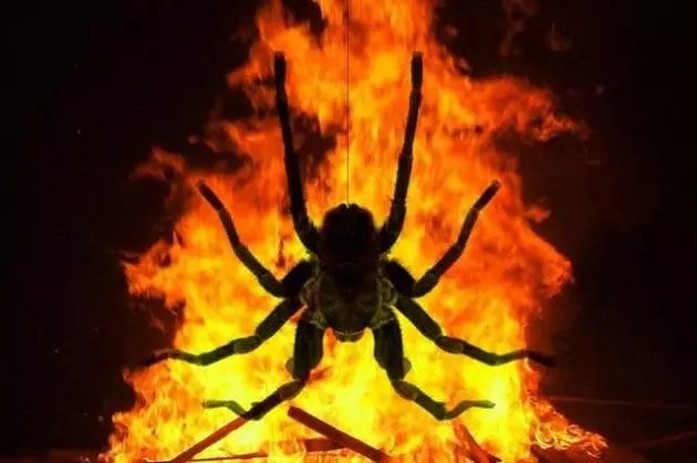 Led Home Lighting Business Woman Sets Home On Fire In Attempt To Kill Spider - The