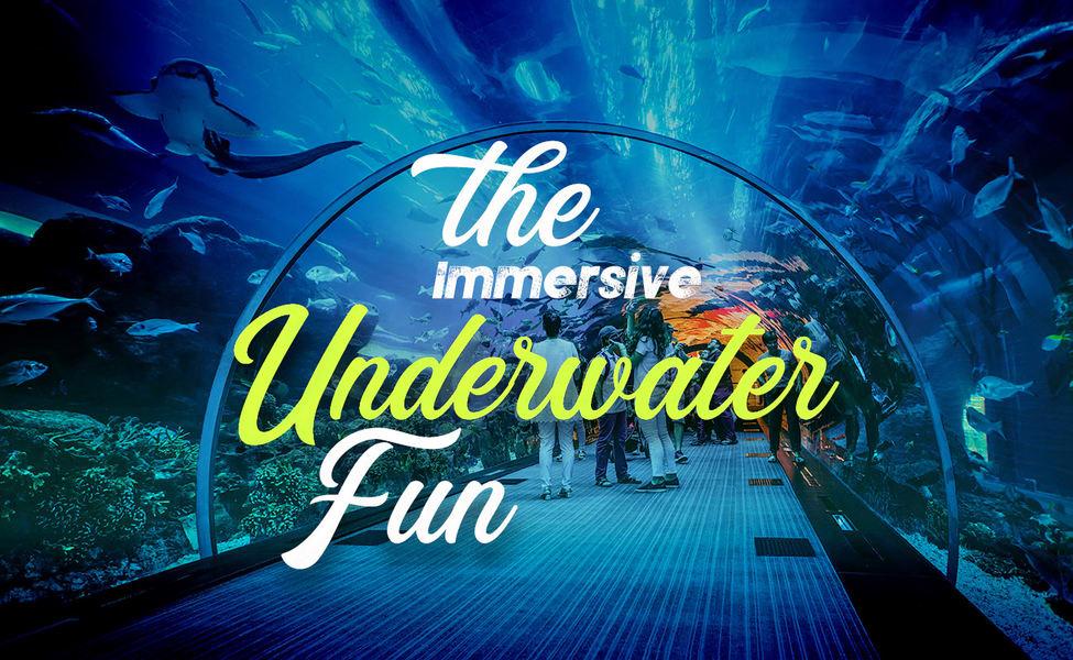 Dubai Aquarium Underwater Zoo Combo Ticket Flat 25 Off Thrillophilia