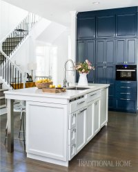 Blue and White Kitchen Decor Inspiration {40 Ideas ...