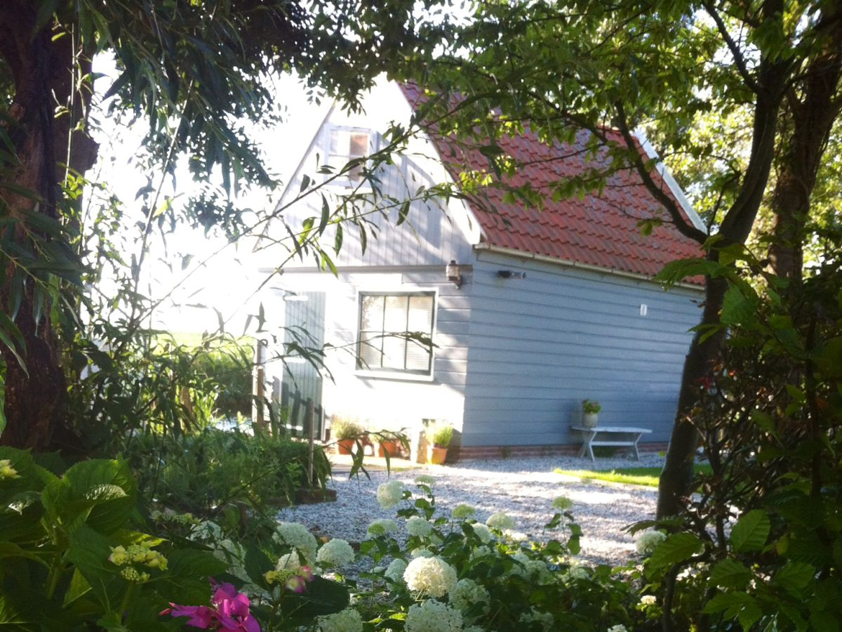 Ferienhaus Mit Pool Nordsee Holland Holiday House Amsterdam Country Cottage Amsterdam Mrs Karen Beun