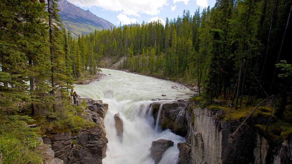 Falling Into Water Wallpaper Sunwapta Falls In Jasper Alberta Expedia Ca