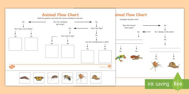 Animal Flow Chart Worksheet - animal flow chart, flow chart