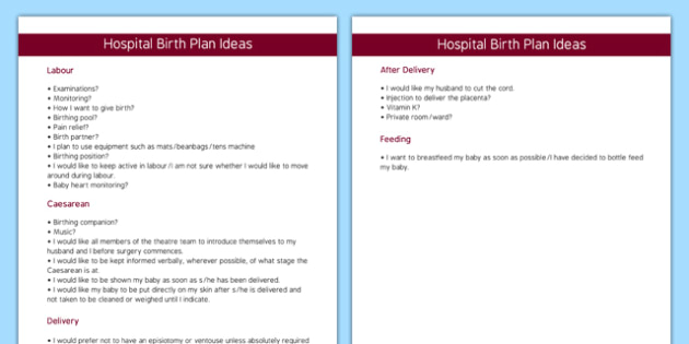 Editable Hospital Birth Plan Template