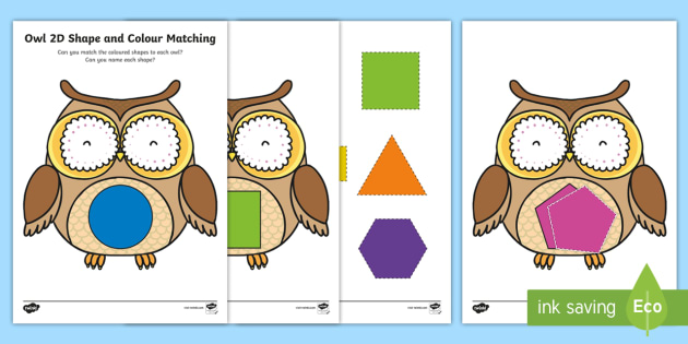 Owl-Themed Colour Matching Activity - EYFS Owlets, Owl Babies