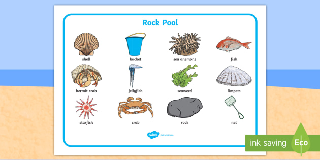 Seaside Rock Pool Word Mat - seaside, beach, seaside word mat