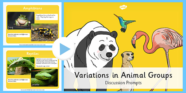 Animal Groups PowerPoint - grouping animals, animals - types of power points