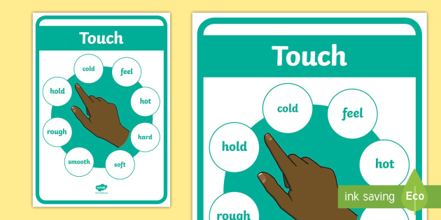 New Ks1 The Five Senses Touch A4 Display Poster Touch