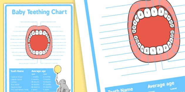 Baby Teething Chart - Baby, teeth, teething, baby teeth, chart, new