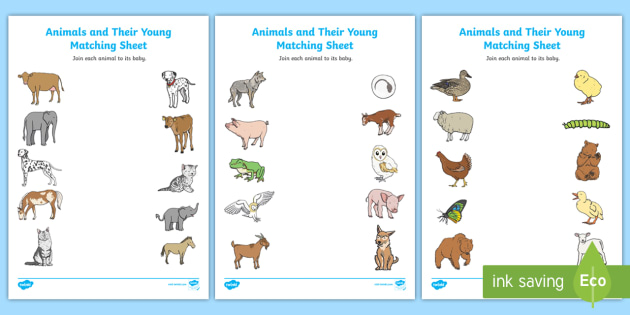FREE! - Animals and Their Young Matching Worksheet / Worksheets - match