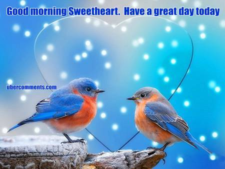 Good Afternoon Wallpaper With Quotes Good Morning Sweetheart Have A Great Day Today Good