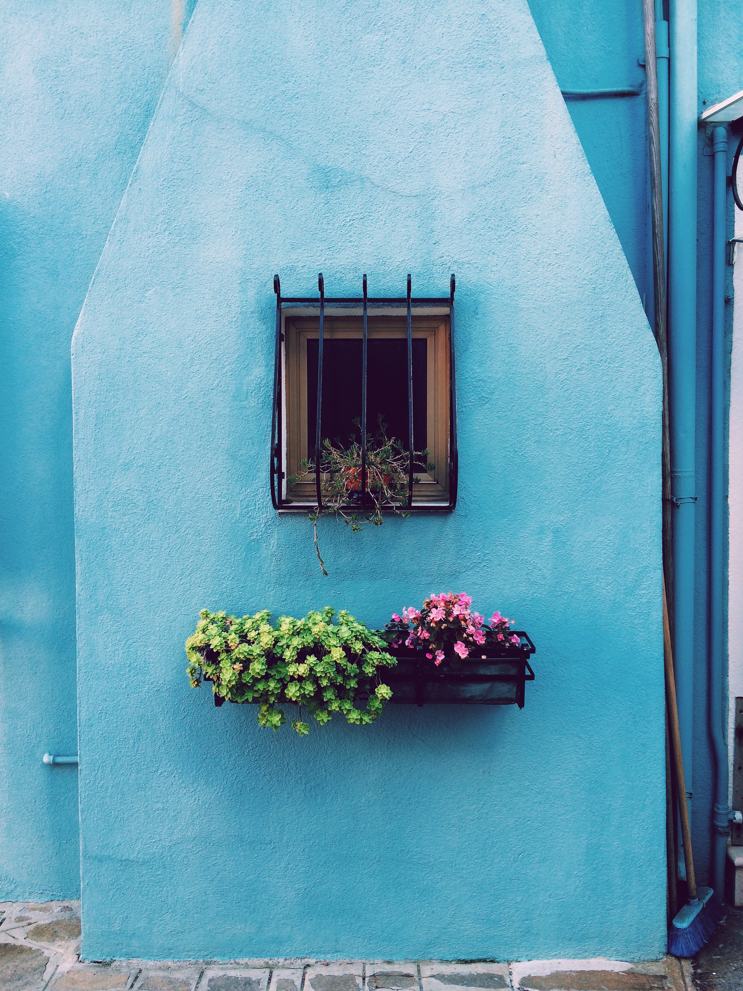 Free Girl Wallpaper Window Flower Blue And Wall Hd Photo By Paula Borowska