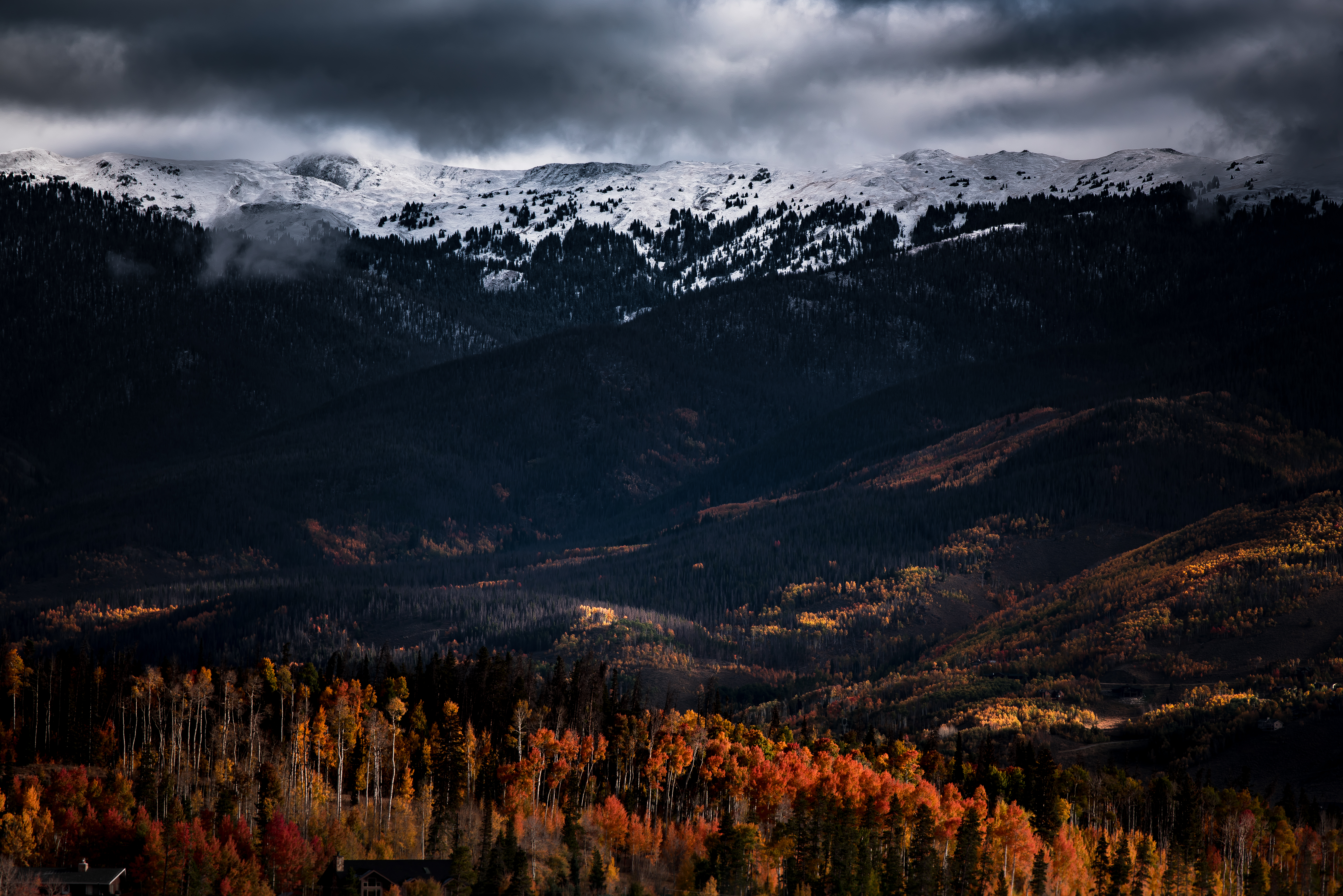 Fall Pictures For Wallpaper Free 100 Best Free Hd Harmony Photos On Unsplash