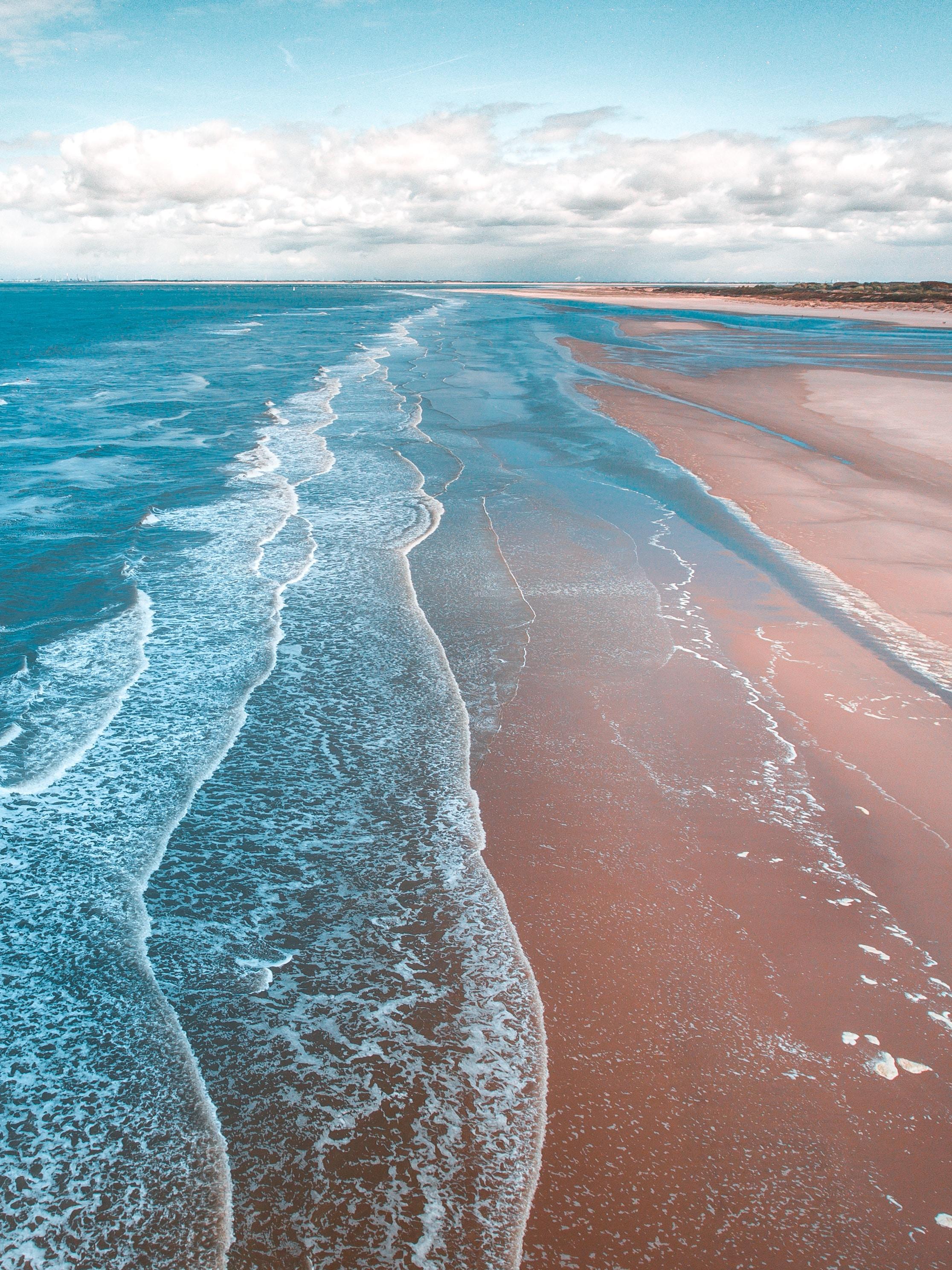 Free Fall Animal Wallpaper Download Beach Wallpapers Unsplash