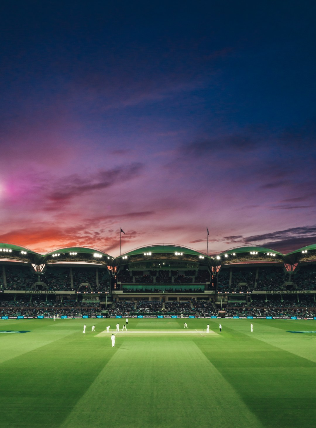 100+ Cricket Pictures [HD]   Download Free Images & Stock Photos on Unsplash