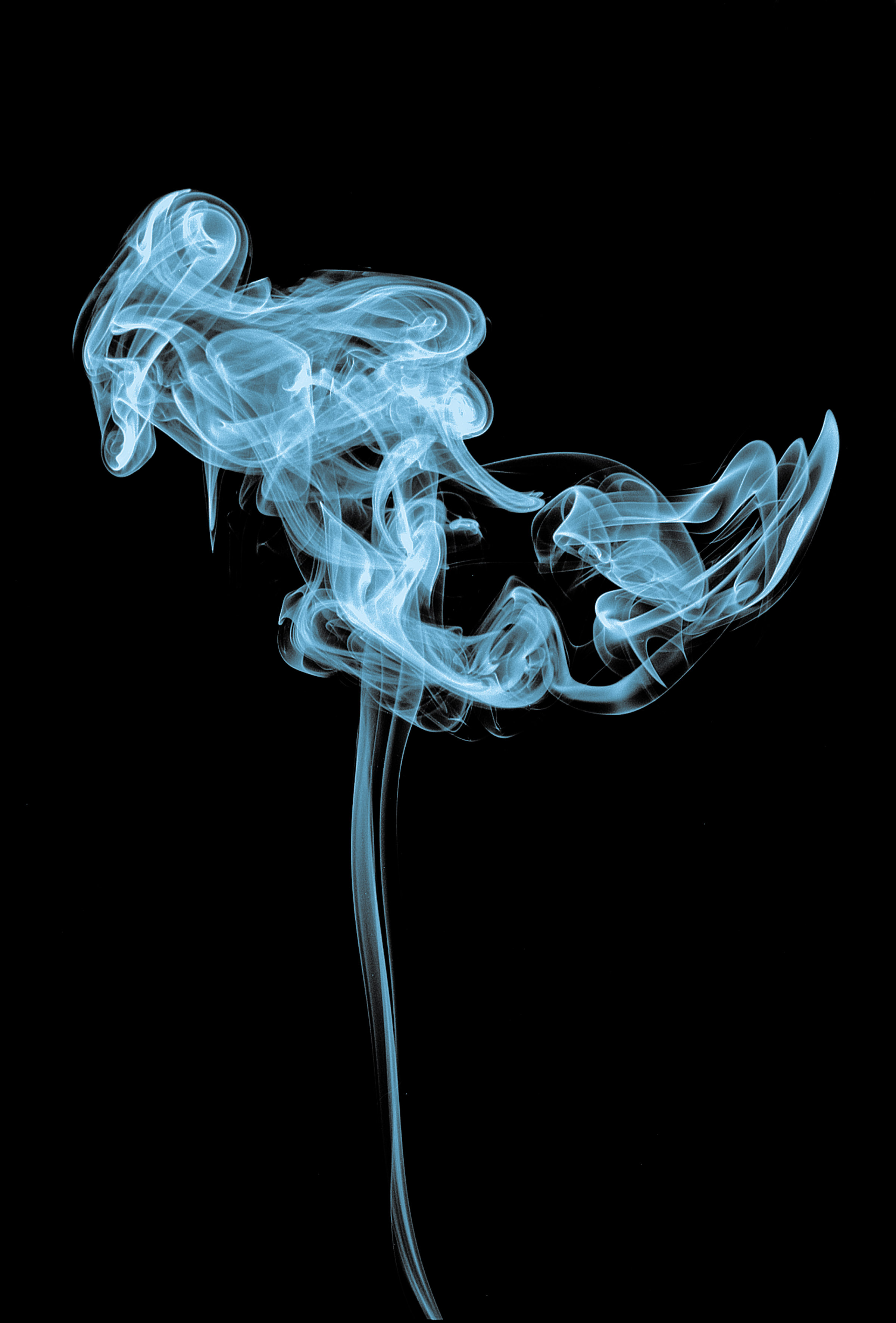 Colorful Skull Iphone Wallpaper 20 Smoke Images Hd Download Free Pictures On Unsplash