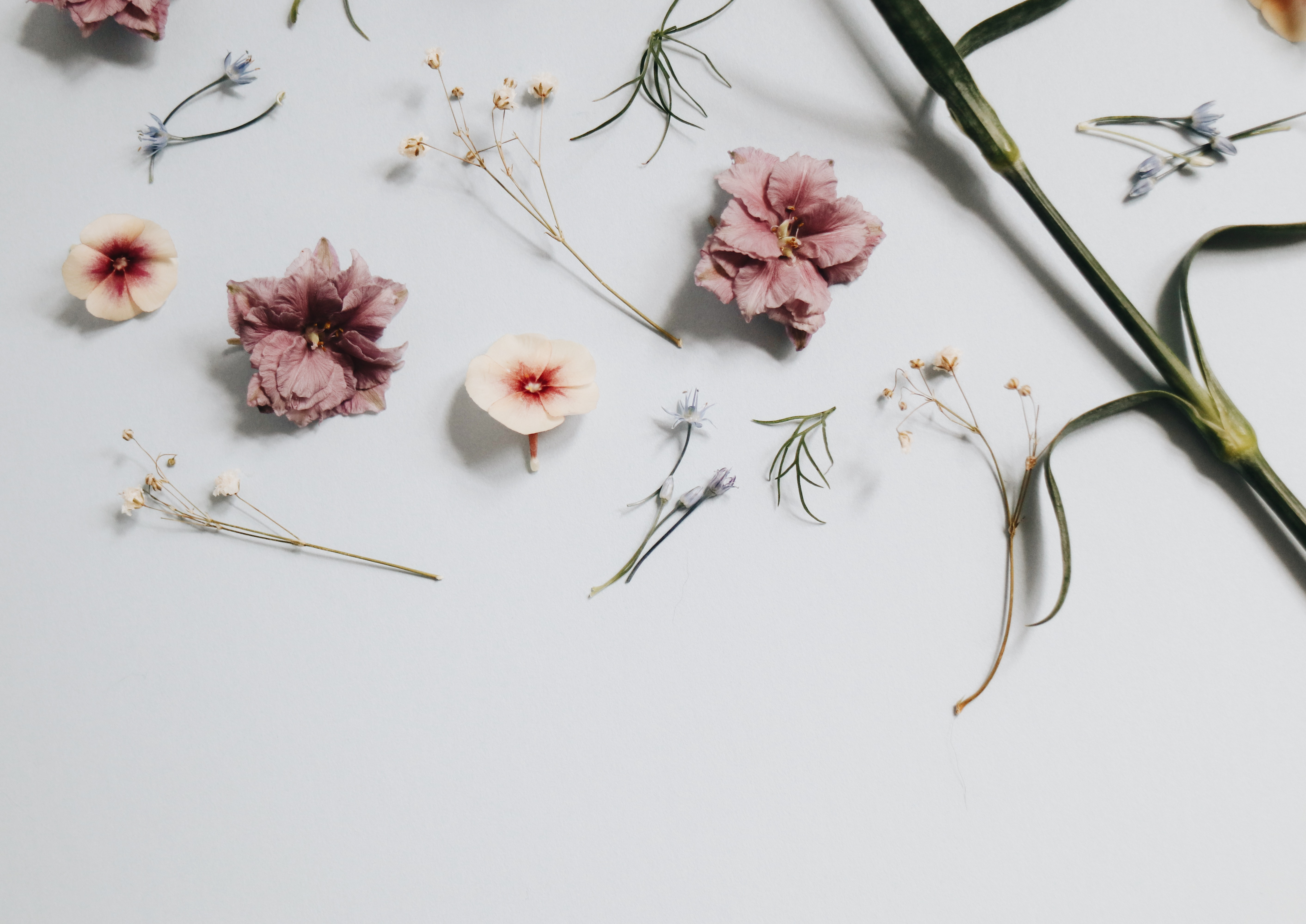 Cute Wallpapers For Lockers 100 Minimalist Pictures Download Free Images On Unsplash