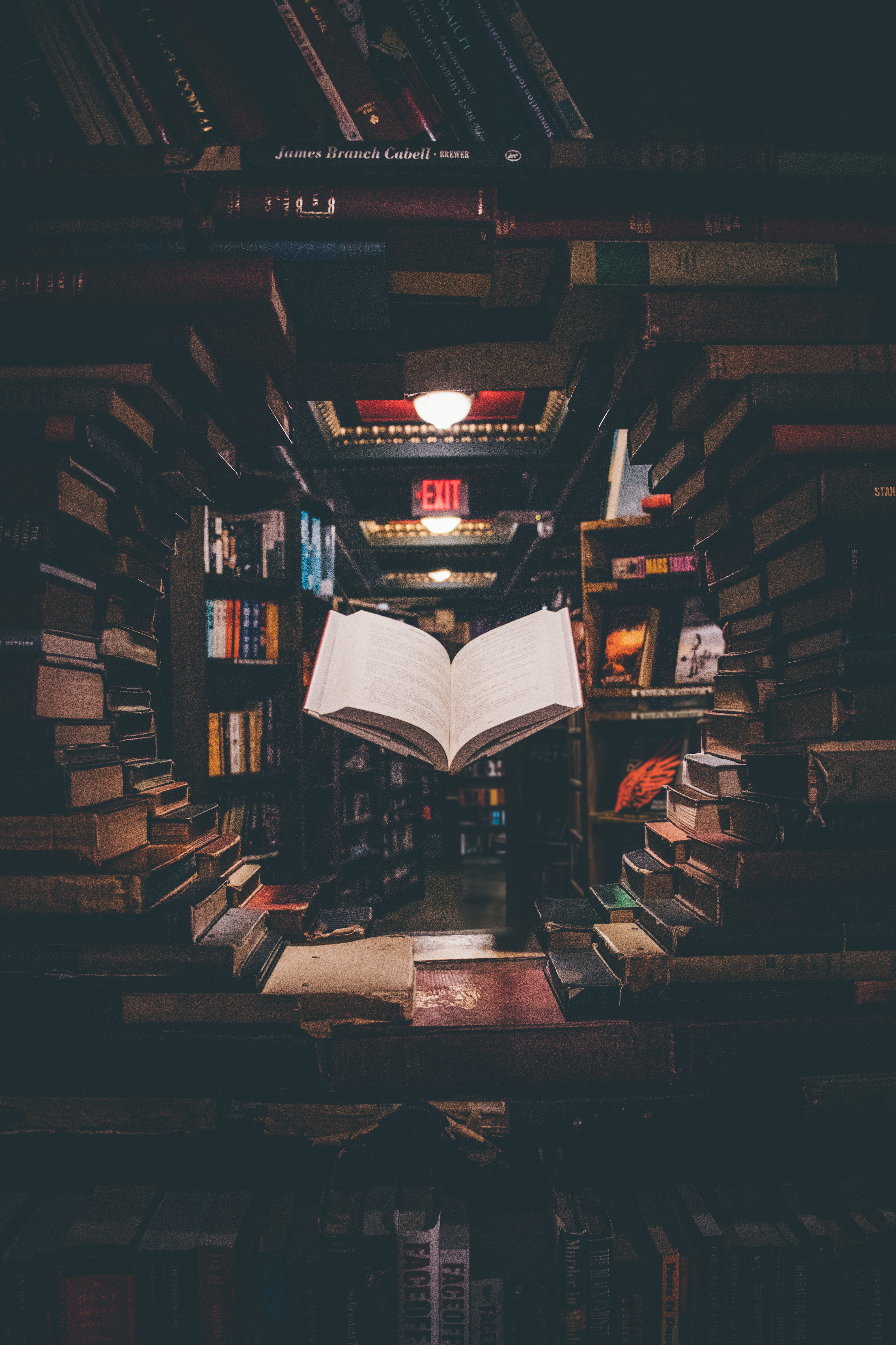 Knowledge Quotes Wallpapers 4k Best 500 Library Pictures Hd Download Free Images On