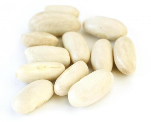 Medium Of What Are White Beans