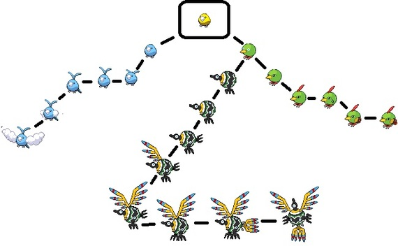 Taillow Evolution Chart - lektoninfo