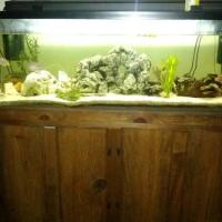 fish tanks for sale 100 gallon - 100 Gallon Aquarium For Sale