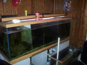 180 GALLON AQUARIUM   (HAMTON) for Sale in Norfolk, Virginia