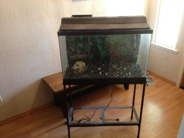 100 gallon fish tank gravel 80 gallon fish tank with for 100 gallon fish tank stand