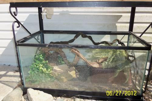 40 gallon reptile tank and stand complete set up for Sale in Metamora