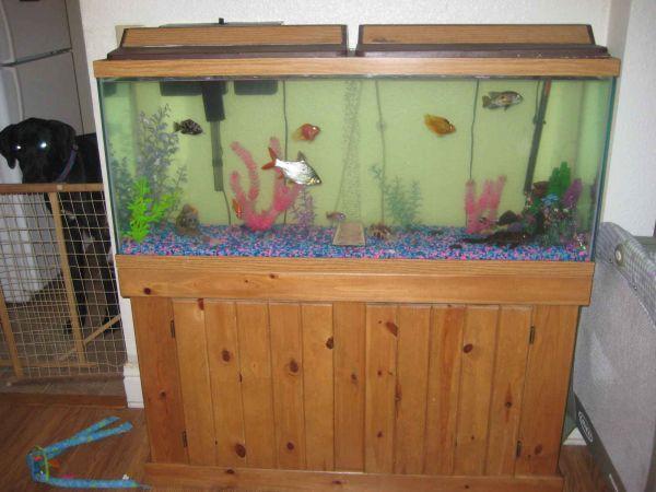 55 GALLON FISH TANK COMBO PINE COLOR   $250 (PHILADELPHIA) for sale in