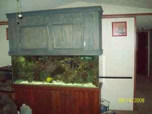 Marine Fish Tank Maintenance Lights For Sale 2017 Fish