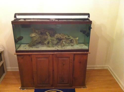 75 Gallon Complete Saltwater Aquarium Setup for Sale in Owings Mills