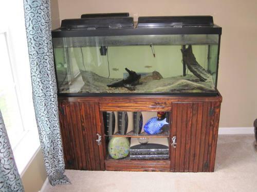75 Gallon Fish Tank Aquarium w/ Stand, Accessories & Fish for Sale in