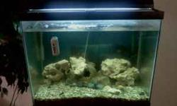 Fish Tanks For Sale In Ct 90 Gallon Fish Tank For