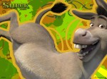 Funny Donkey From Shrek