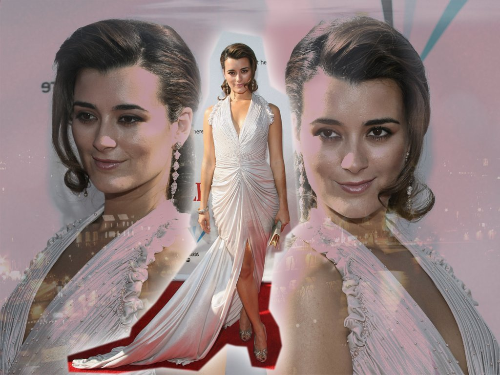 Cote De Pablo Hot 9 Cote Cote de Pablo Wallpaper 2645114 Fanpop fanclubs x
