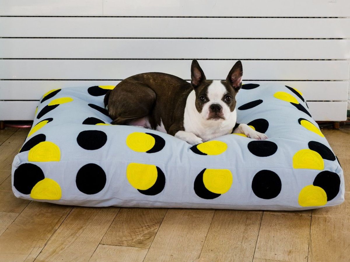 Double Dog Bed Double Dot Dog Bed