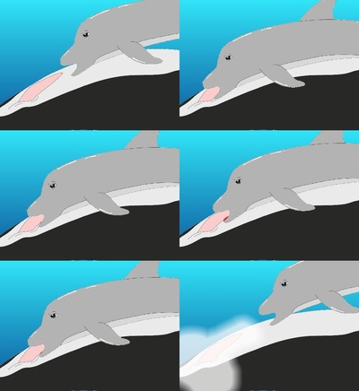 female dolphin furry