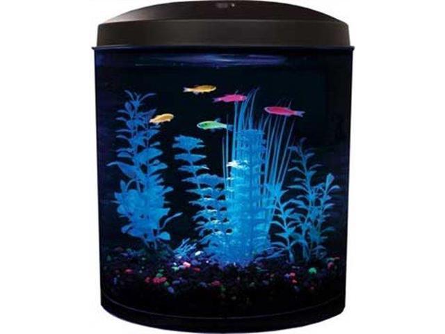 Aquarius Aq35000gpc Glofish 180 3 1/2 Gallon Aquarium Kit   Newegg.com