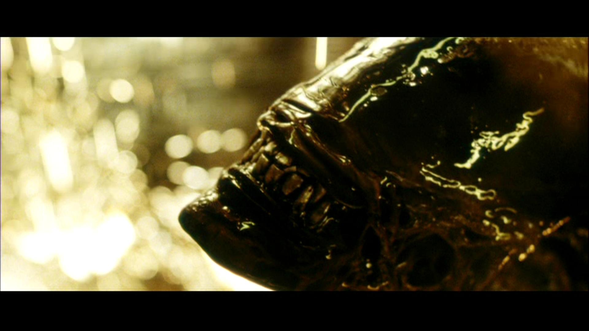 Acid Iphone Wallpaper Alien Resurrection Hd Wallpaper Background Image