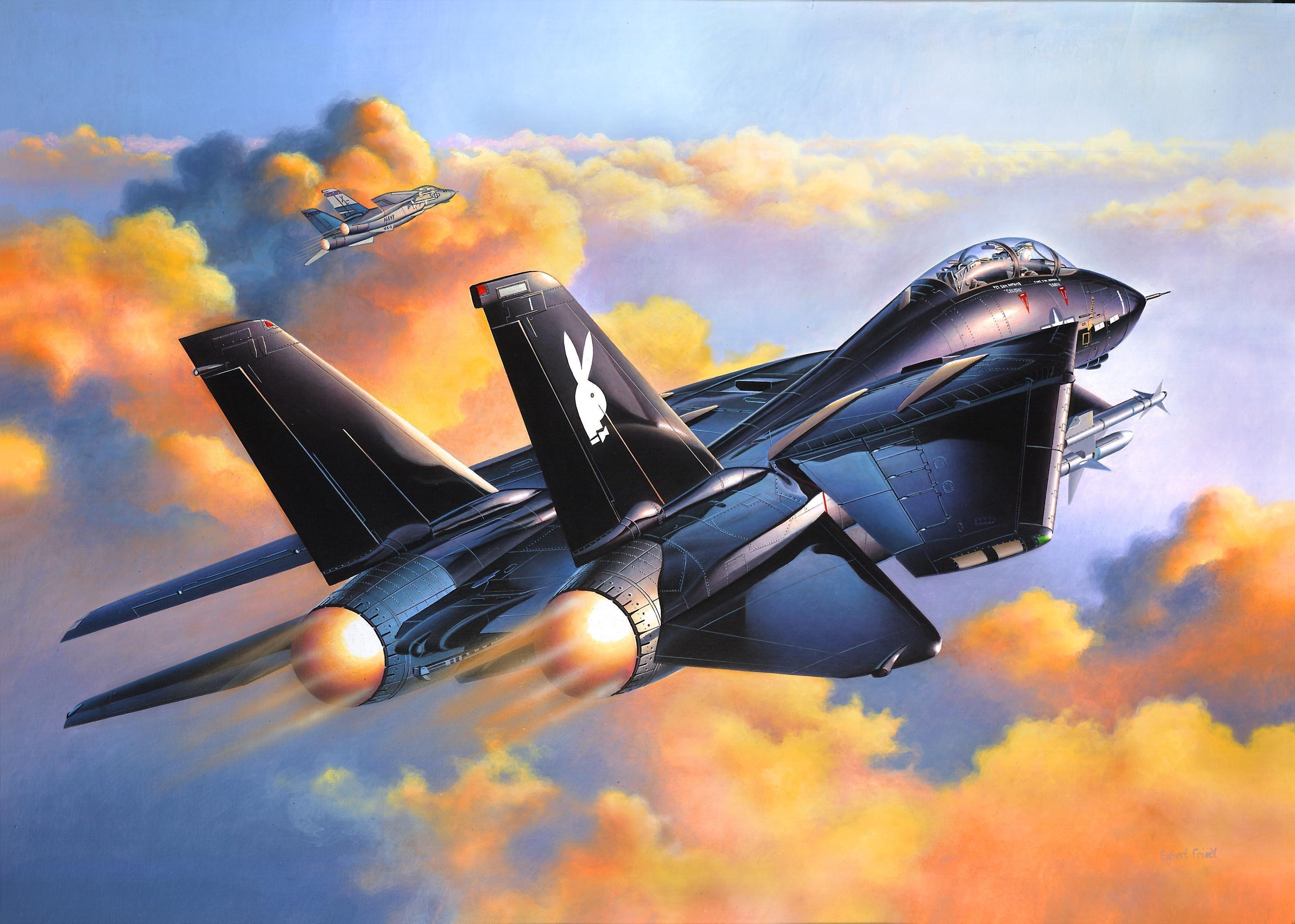 Military Quotes Iphone Wallpaper Revell 1 48 Grumman F 14a Black Tomcat Model Kit Computer
