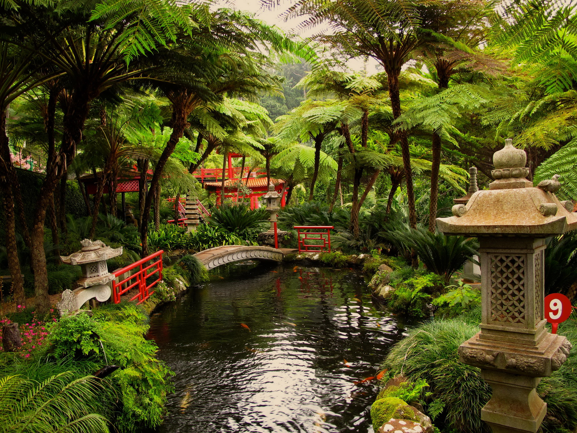 Jardin Japonais Wallpaper Oriental Full Hd Wallpaper And Background Image