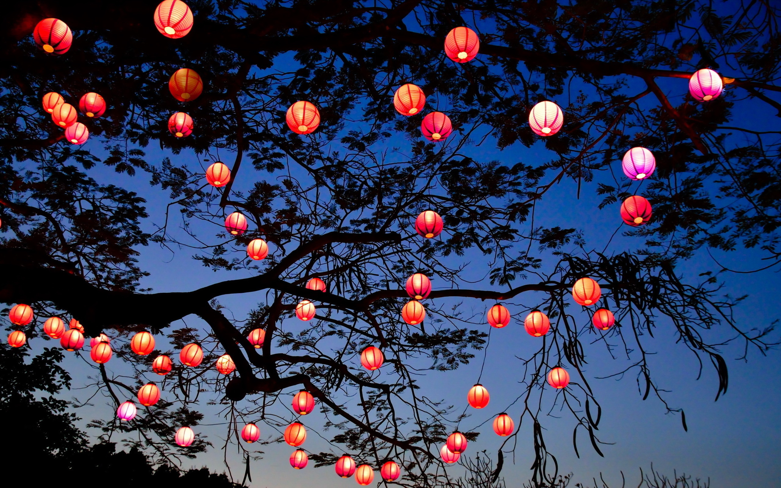 Lanterns Wallpaper 81 Lantern Hd Wallpapers Background Images Wallpaper Abyss