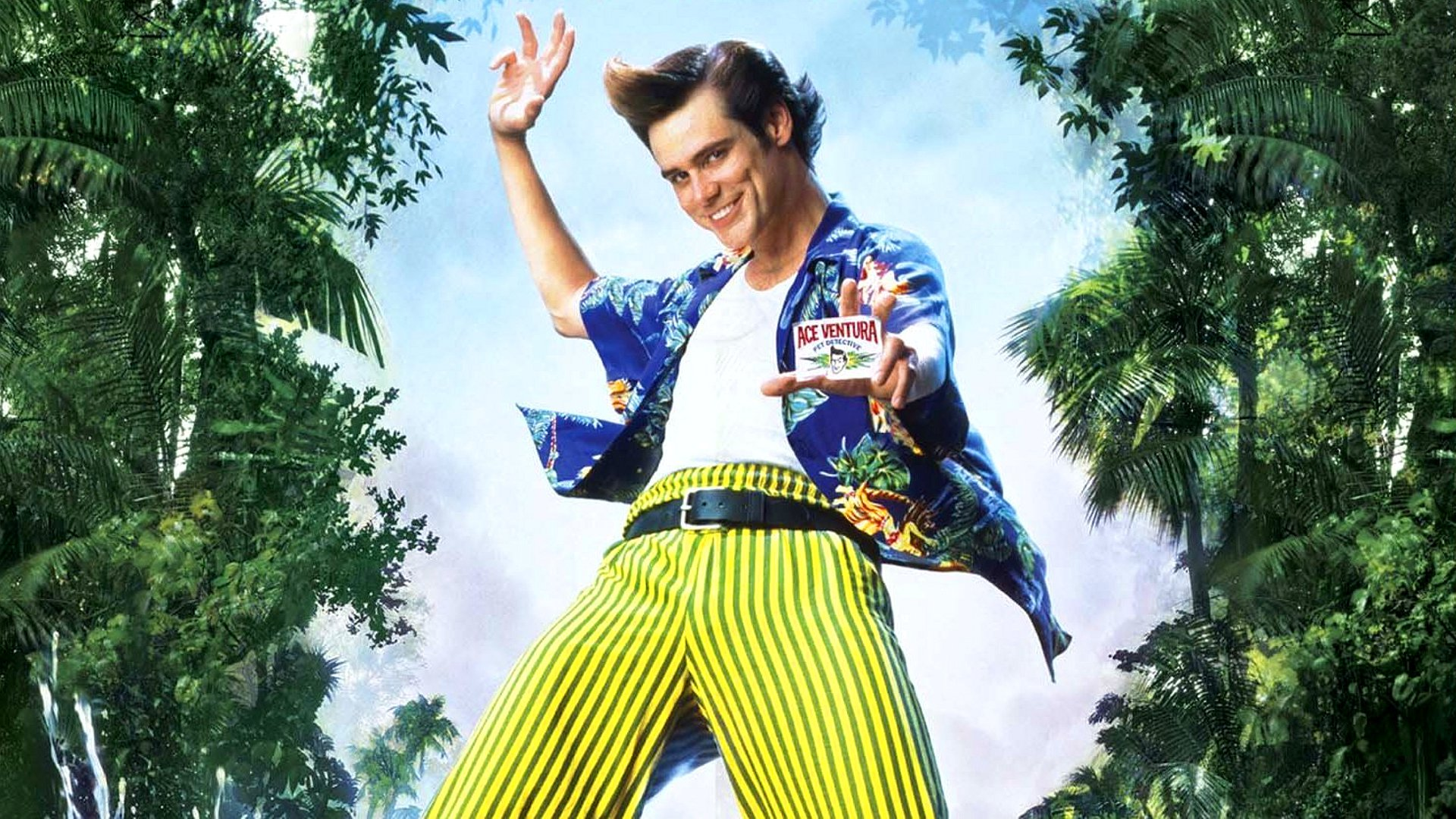 Cool Lion Wallpapers Hd 8 Ace Ventura When Nature Calls Hd Wallpapers