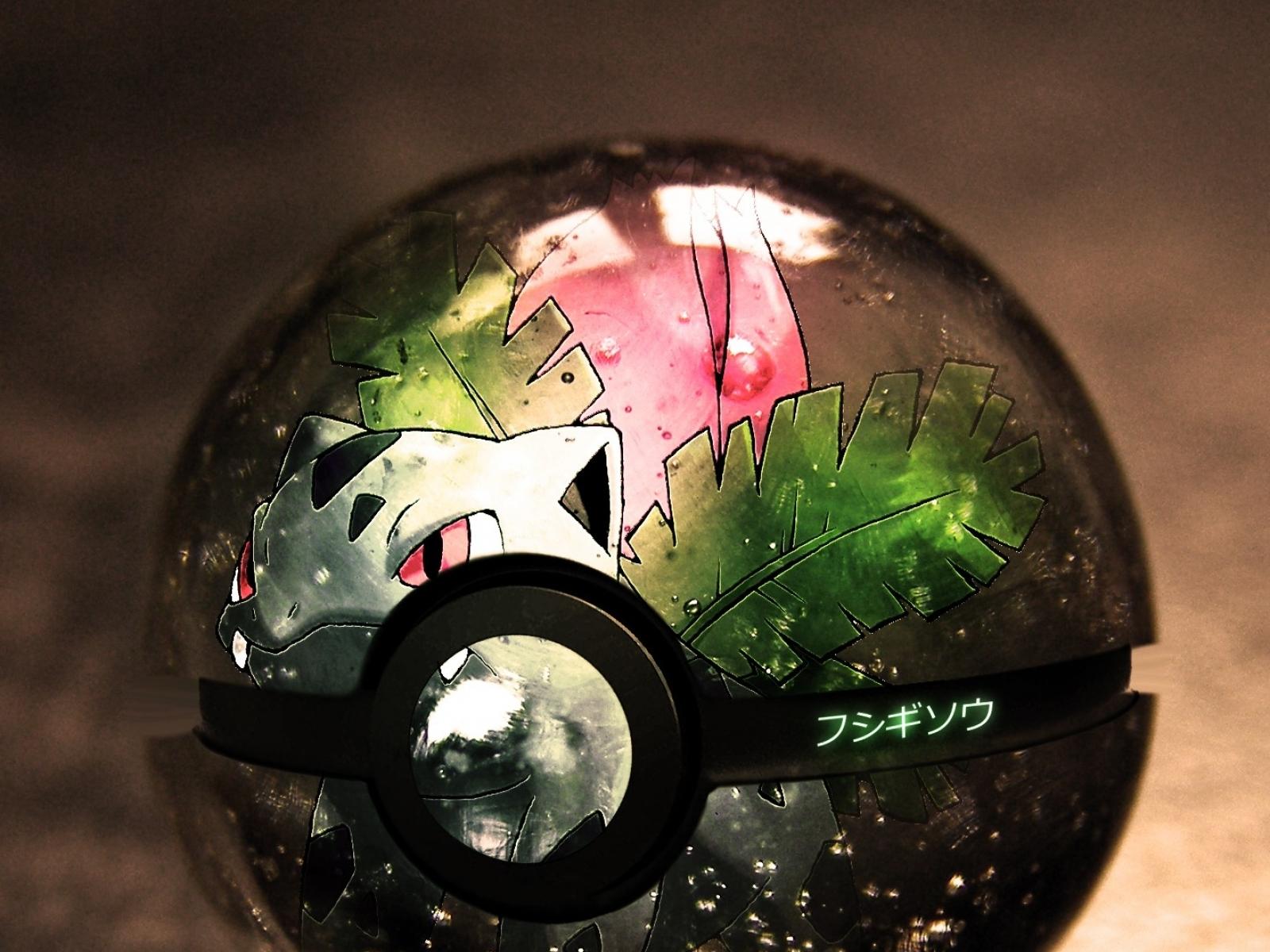 Pokemon Iphone 5 Wallpaper Pok 233 Mon Fondo De Pantalla And Fondo De Escritorio