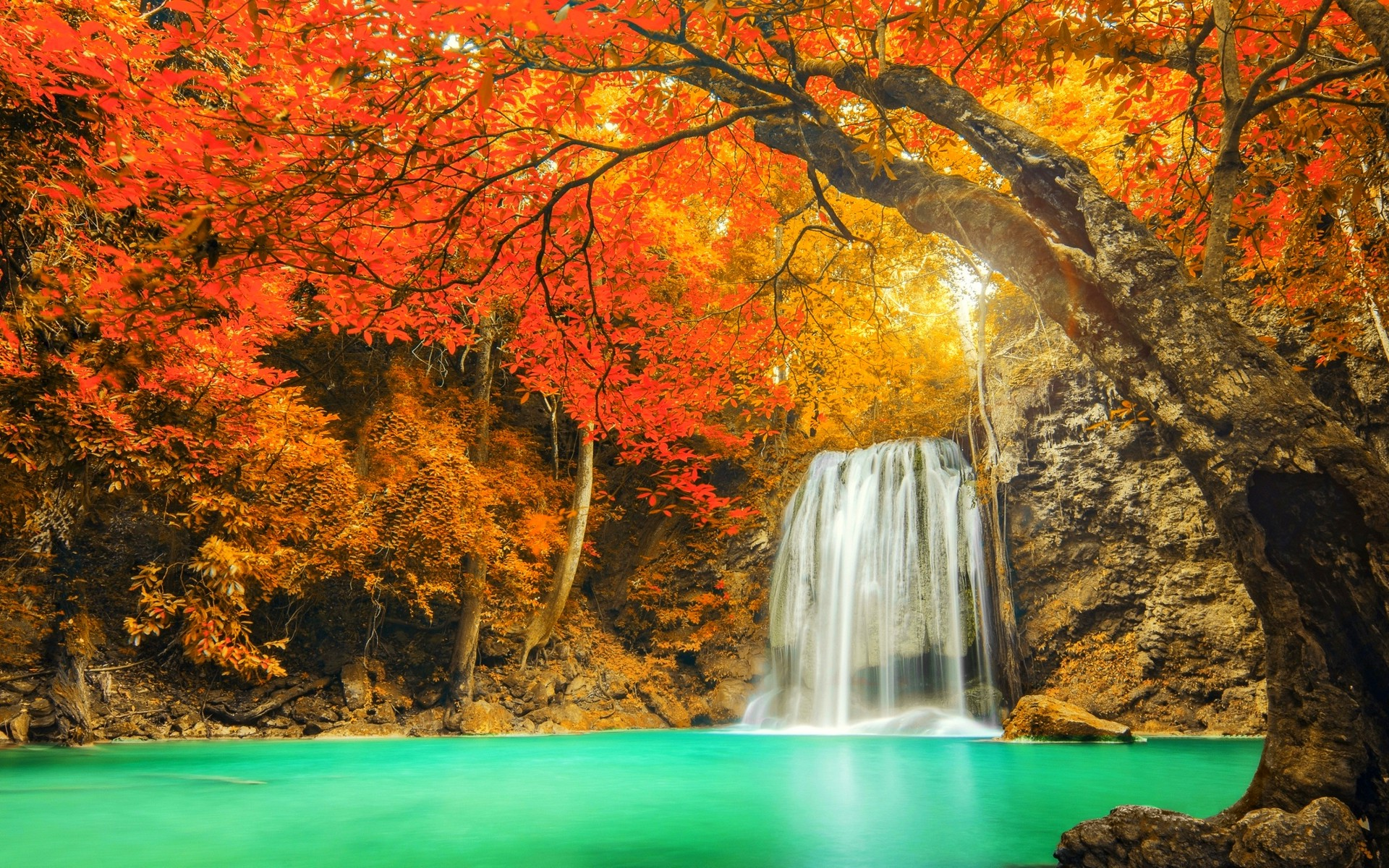 Fall Leaves Live Wallpaper Iphone Autumn Waterfall Hd Wallpaper Background Image