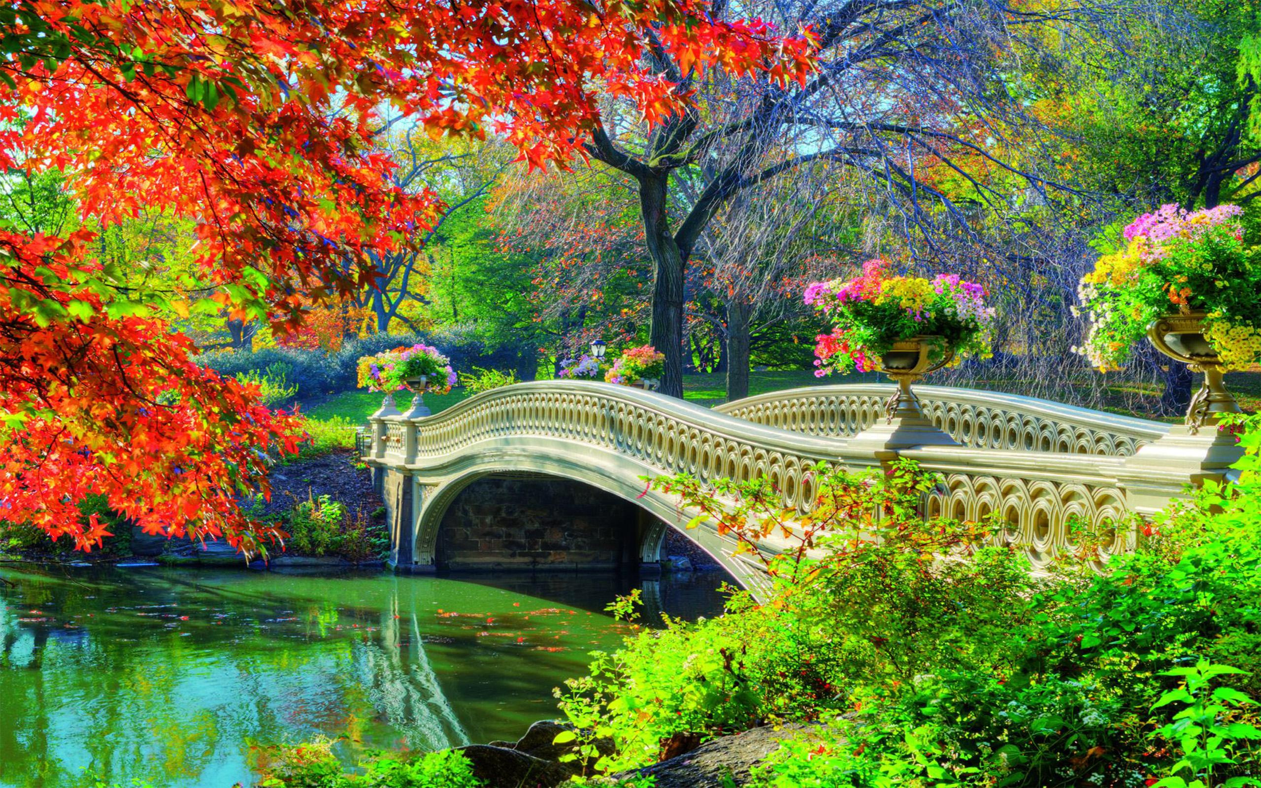 Iphone Se Fall Colors Wallpaper Central Park Bridge In Springtime Fond D 233 Cran Hd