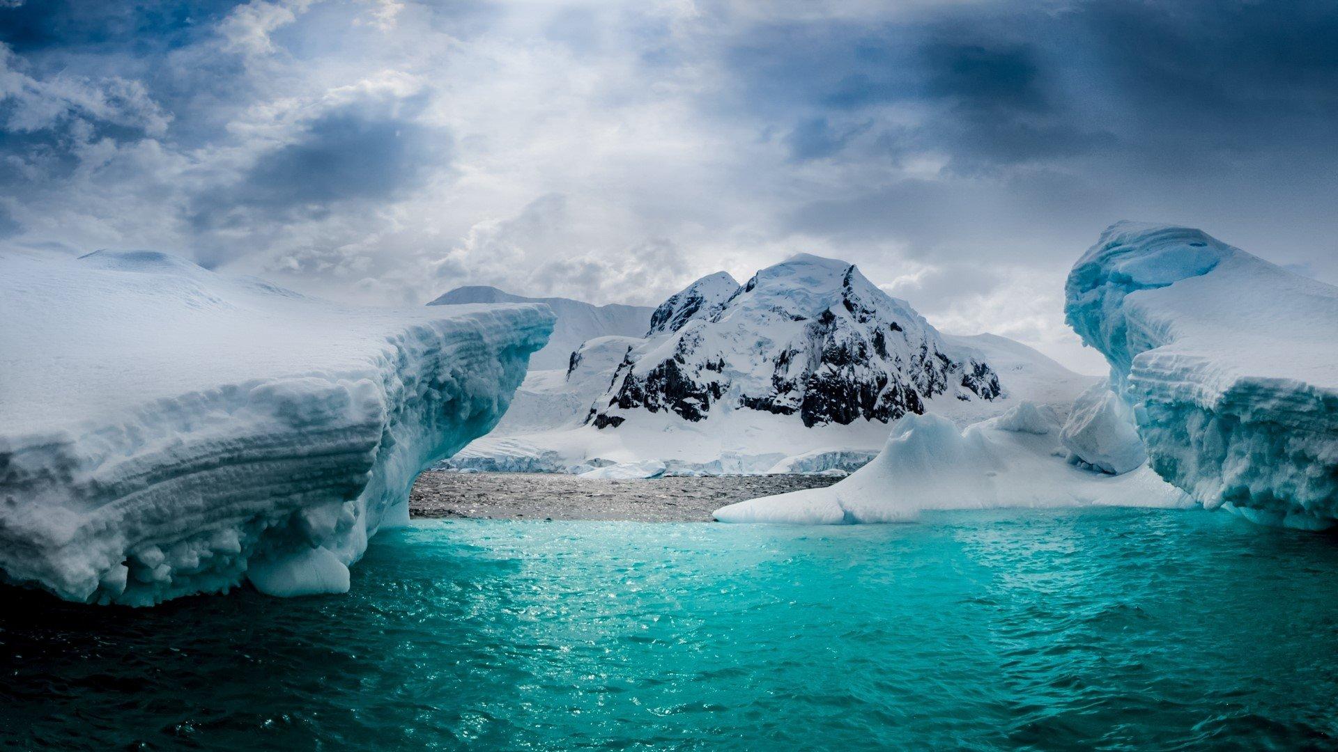 Underwater Iphone Wallpaper Half Moon Island In Antarctica Full Hd Wallpaper And